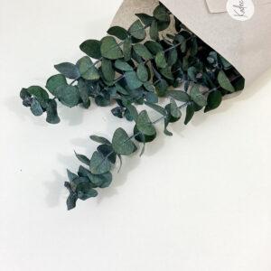 Droogbloemen bundel Tarwe lichtroze