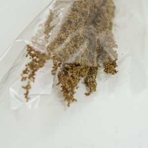 Droogbloemen bundel Brizonne natuur (bruin)